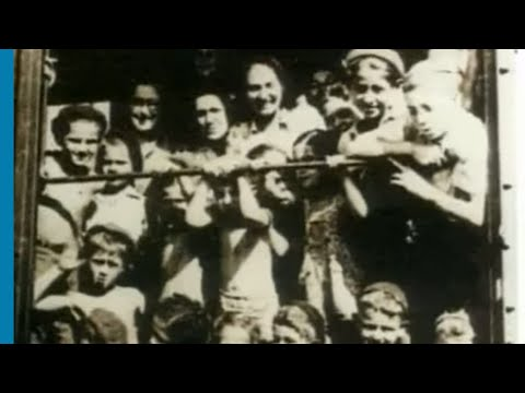 Holocaust Survivor and Israeli Combat Officer