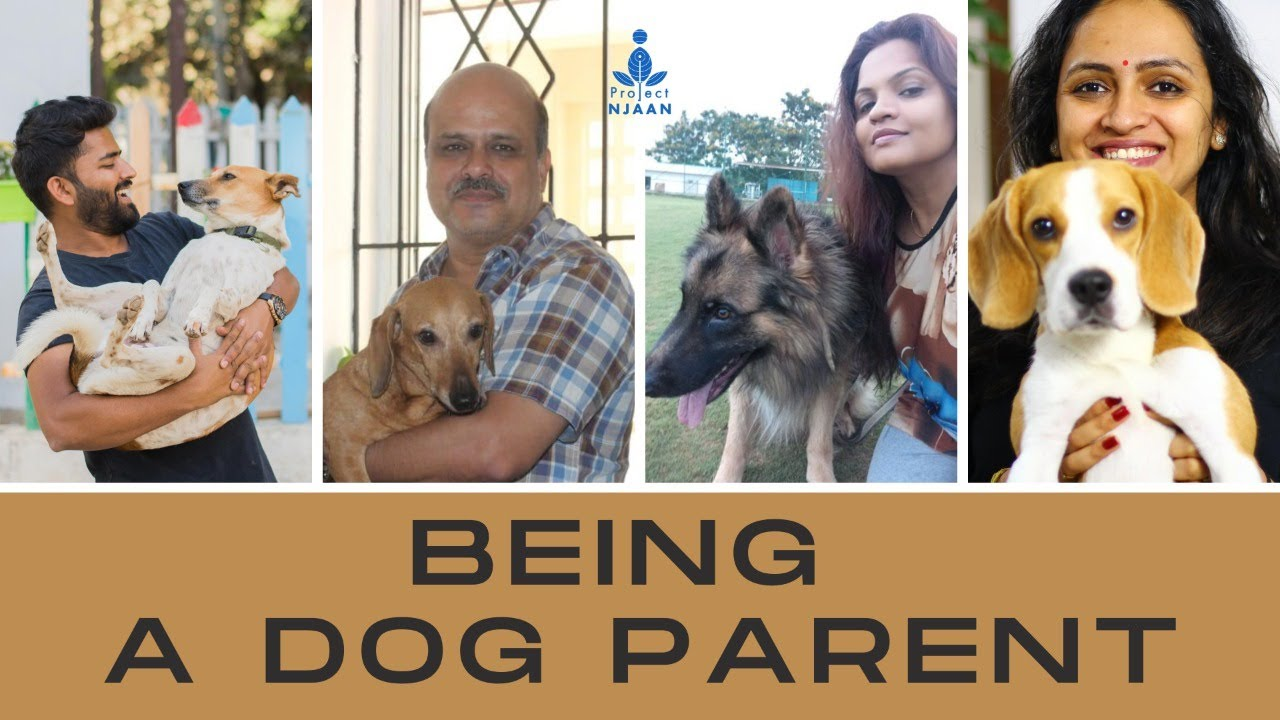 Being a Dog Parent | Tune In Tuesdays