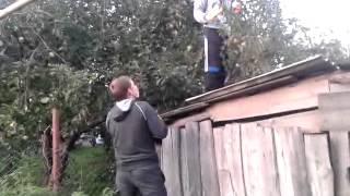 Ябельки пиздиют)