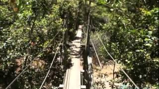Мадагаскар Резерв Вакона   Узкая веревочная лестница(, 2013-01-02T23:38:06.000Z)