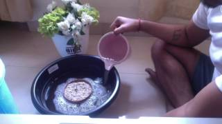 How To Grow Lotus from Seed FINAL DAY-(HINDI)