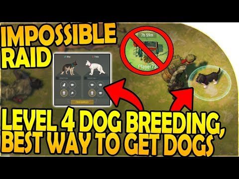 LEVEL 4 DOG BREEDING, The IMPOSSIBLE RAID, BEST DOG METHOD- Last Day On Earth Survival 1.7.12 Update