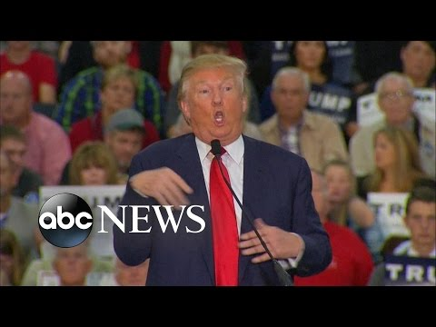Donald Trump Accused of Mocking Reporter with Disability