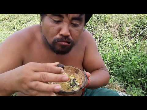 Primitive Technology - find black spider meet scorpion  - take cook  eating delicious