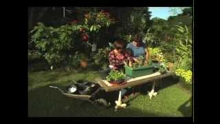 Gardening: How To Make A Window Box