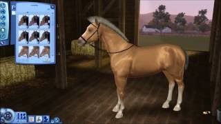 Sims 3 - Create-A-Pet Speed Video