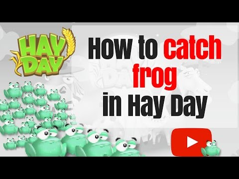 How to catch frogs in Hay Day - Hay Day Quick Tips #3 (2016)