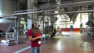 98.1 FREE FM Labatt Brewery Tour Experience