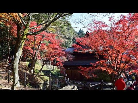 HOT NEWS Tourism In Seto Aichi