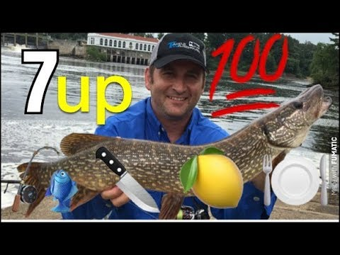 Catch Clean Cook Northern Pike with 7UP Poor Man's Lobster