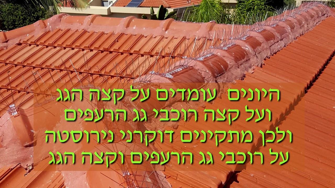 דוקרני נירוסטה בגג רעפים - כנפיים הרחקת יונים