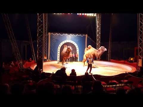 French Circus magic
