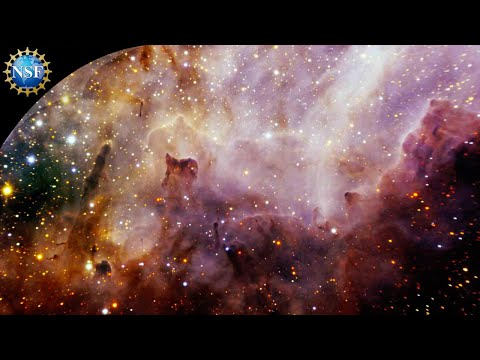 The Stars Within Us: How the Elements Inside You, and Everything, Were Forged