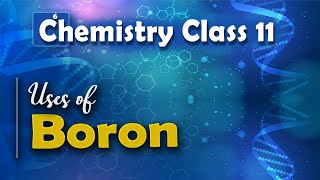 Uses of Boron - P Block Elements - Chemistry Class 11