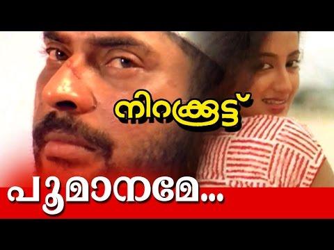Poomaname.. | Nirakkoottu | Super Hit Movie Song | Video Song