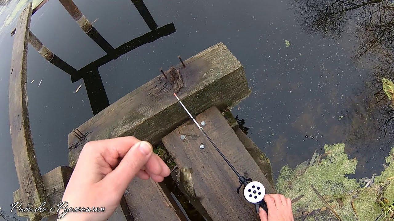 куда поехать на зимнюю рыбалку