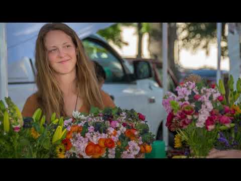 Pine Creek Flowers Organic Flower Farm