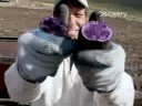 Potato Growers