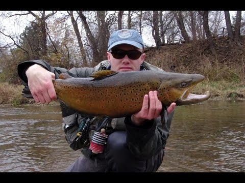 How To Nymph Fish In Clear Water For Tailwater Trout And Great Lakes Steelhead And Lake-run Browns.