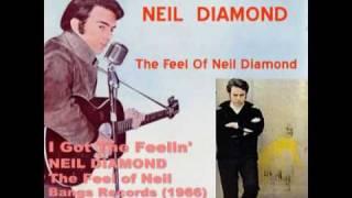 NEIL DIAMOND EN ESPAÑOL-I Got the Feelin
