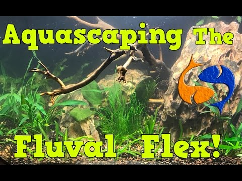 Live Aquascaping of the Fluval Flex 15 Gallon, I LOVE TECHNO