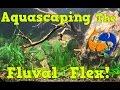 Live Aquascaping of the Fluval Flex 15 Gallon, I LOVE TECHNOLOGY!!!