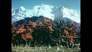 1950s Nepal full documentary (very rare)
