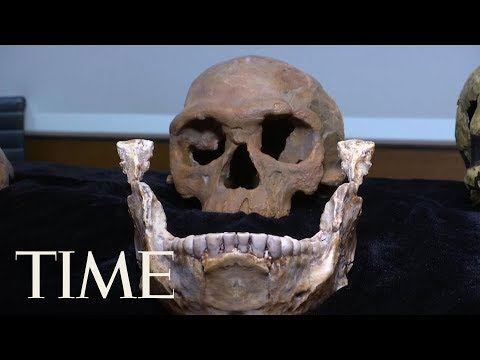 New Fossils Found In Morocco Indicate People Have Been Around Way Longer Than We Thought | TIME