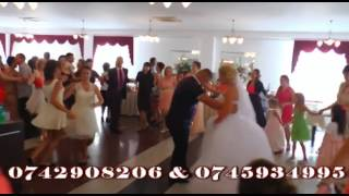 Formatia Global de la Satu Mare nunta Carei 2014