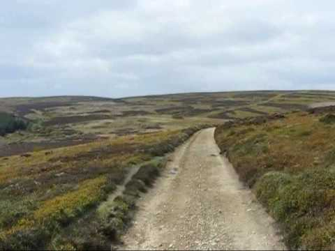 Glyndwr's Way Llangunllo to Felindre 7 May 2009
