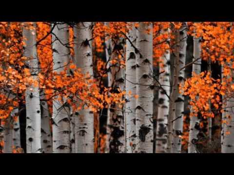 Презентация по музыке  Осень