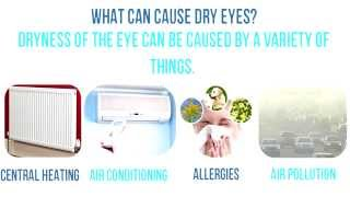 Contact Lenses For Dry Eyes
