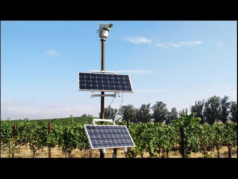 E. Coli; UK Food Shortages; Wine Production Plummets