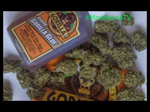 Imagenes Marihuana