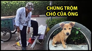 Ông lão nhặt ve chai cô đơn ở Sài Gòn bị nhóm người xấu trộm mất bầy chó cưng | QUỐC CHIẾN Channel