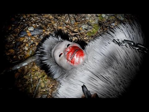 ОХОТА НА БИГФУТА ОТКРЫТА! - Finding Bigfoot