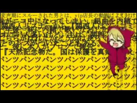 Matryoshka 【96猫(KuroNeko) vip:店長(Tenchou)】Sub.Español + MP3