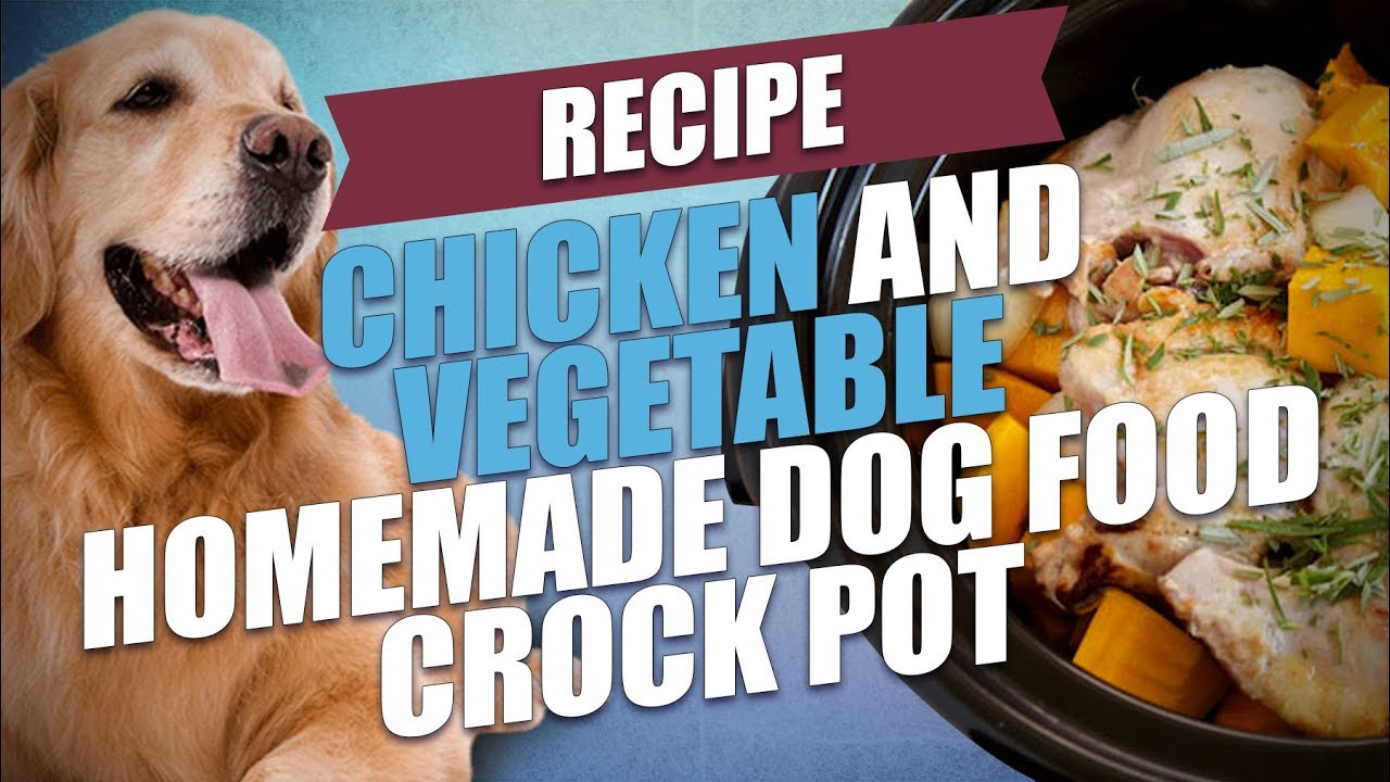 Chicken and vegetable homemade dog food crock pot recipe youtube chicken and vegetable homemade dog food crock pot recipe forumfinder Gallery