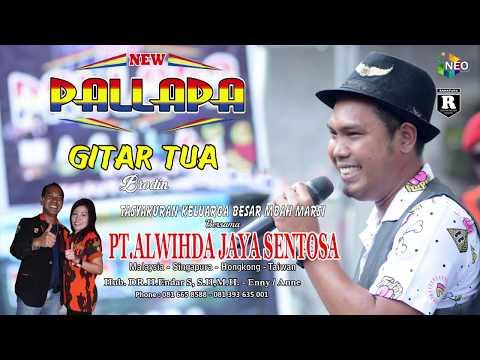 GITAR TUA BRODIN NEW PALLAPA LIVE GEMBLUNG SUKOLILO 2018