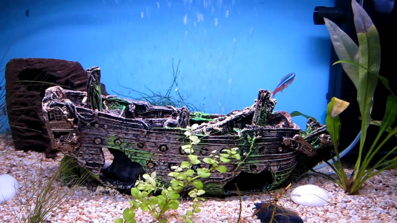 Ship wreck ornament an unfortunate loss youtube for Aquarium decoration ship