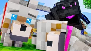 WOLF LIFE FULL MOVIE - All Episodes 1-10 - WOLF LIFE Minecraft Animation