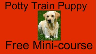 **WOW** Potty Training Puppy Labs - Free Mini-course on Potty Training Puppy Labs