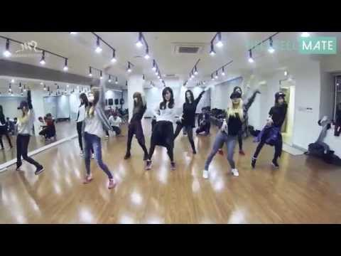 EXO Growl & Girl's Generation(SNSD) Mr.Mr. DanceMirror Ver.