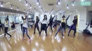 Repeat youtube video EXO Growl & Girl's Generation(SNSD) Mr.Mr. DanceMirror Ver.