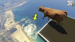 قراند 5 : اقوى طيحات حيوانات 🐸🐸 GTA animals ragdolls compilation