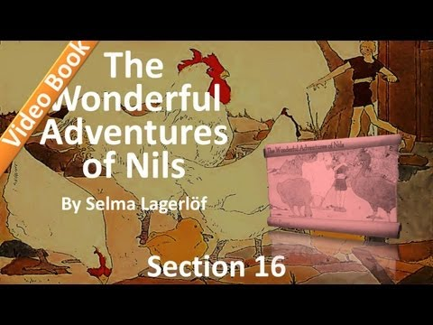 16 - The Wonderful Adventures of Nils by Selma Lagerlöf - The Crows