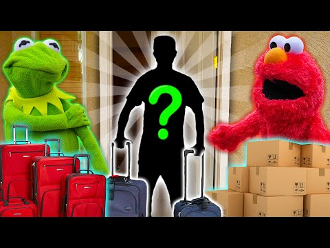 Kermit the Frog and Elmo's NEW Roommate!