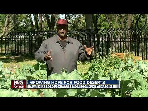 Community gardens helping Tampa neighborhood that lost Winn-Dixie store