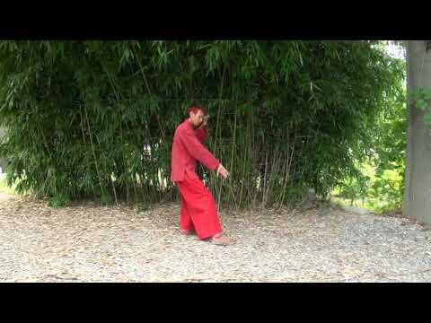 Les 13 Postures, Shi San Shi  十 三 勢