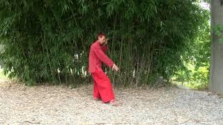 Les 13 postures du Yangjia Michuan Taiji Quan, Shi San Shi  十 三 勢